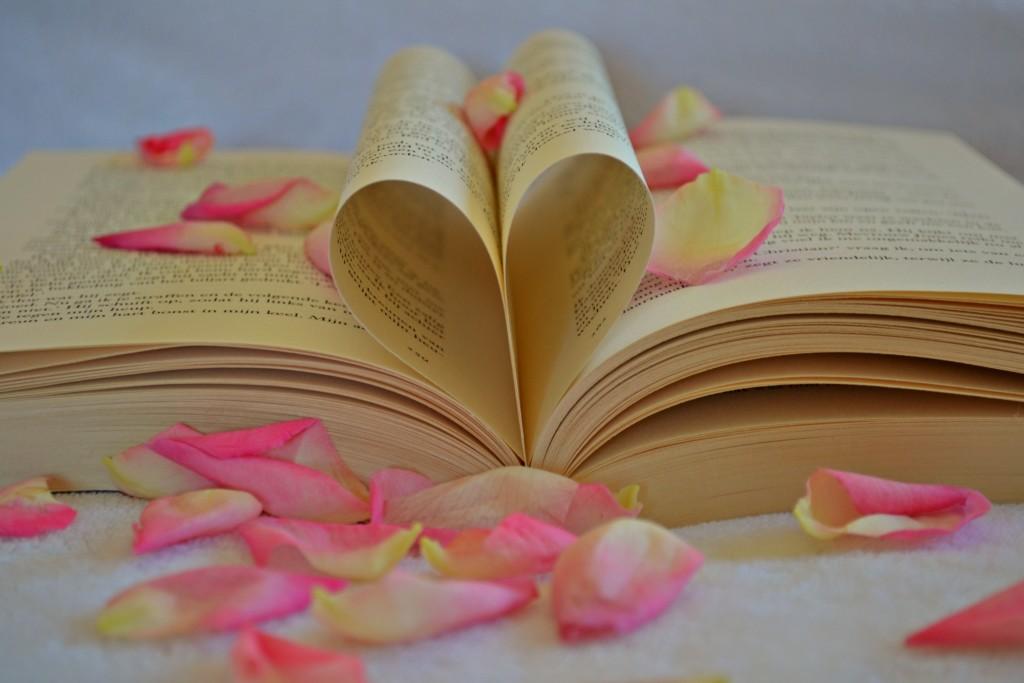 kniha srdce ruzove